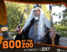 Boo at the Zoo | Photobooth