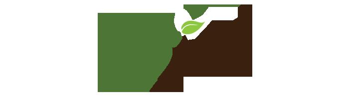 basillofts_logo